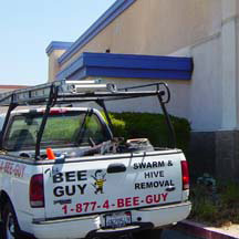 Gardena Bee Removal Guys Service Truck